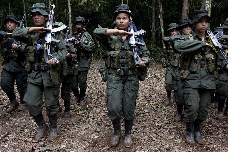 FARC in Meta